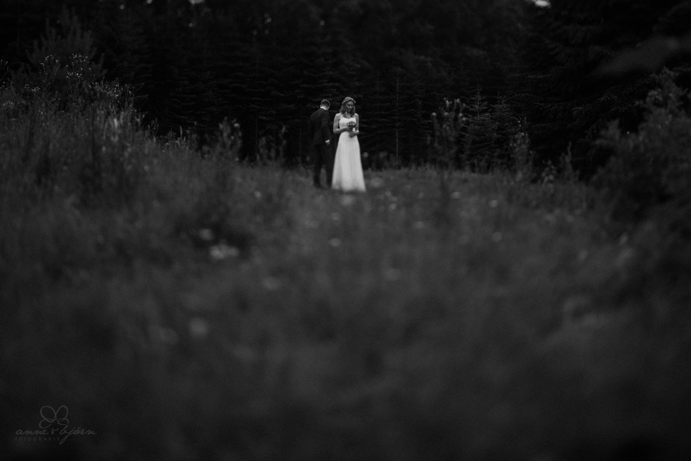 Feld, Kunst, Portrait, Brautpaar